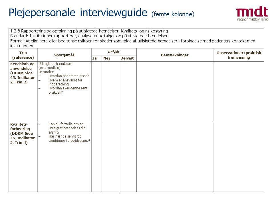 Plejepersonale interviewguide (femte kolonne)