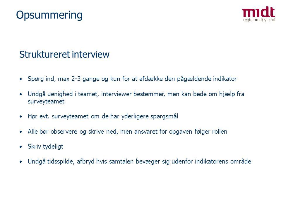 Opsummering Struktureret interview