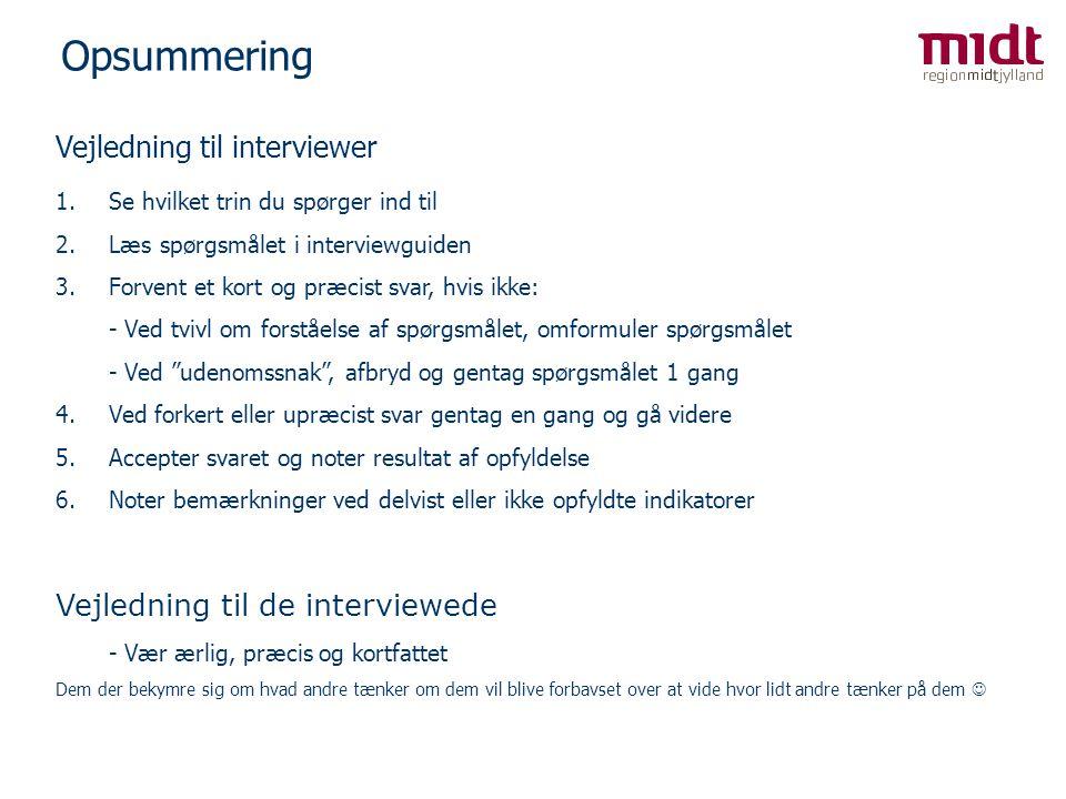 Opsummering Vejledning til interviewer Vejledning til de interviewede