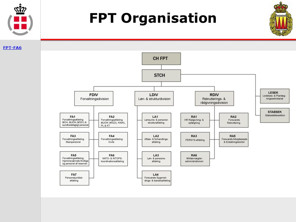FPT Organisation 3