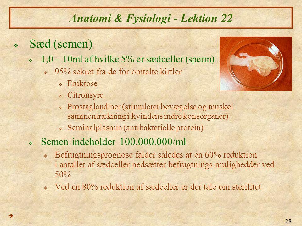 Anatomi & Fysiologi - Lektion 22