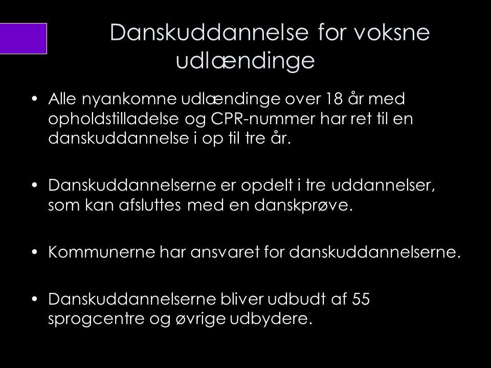 Danskuddannelse for voksne udlændinge