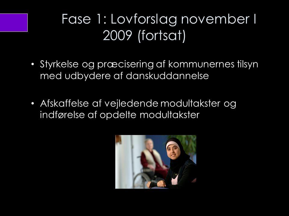 Fase 1: Lovforslag november I 2009 (fortsat)