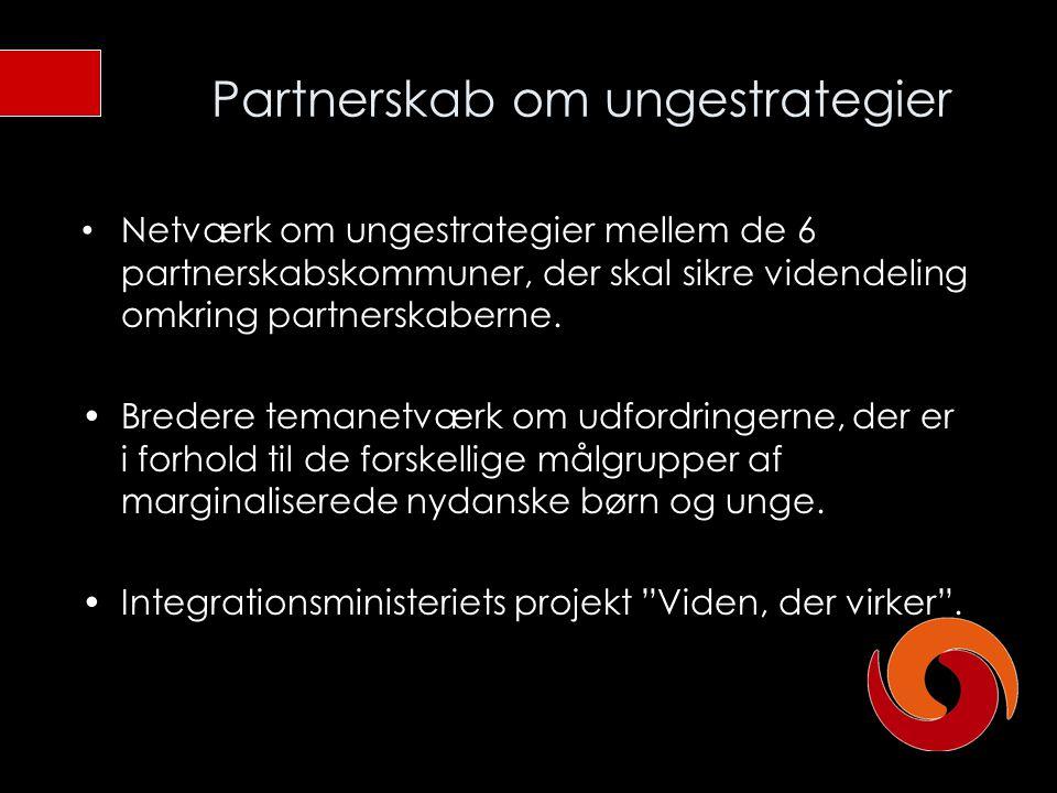 Partnerskab om ungestrategier