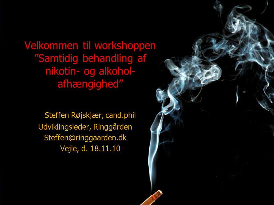Steffen Røjskjær, cand.phil