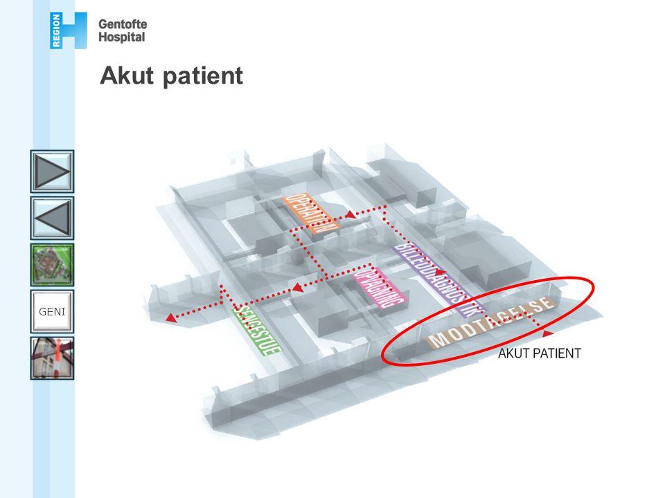 Akut patient GENI