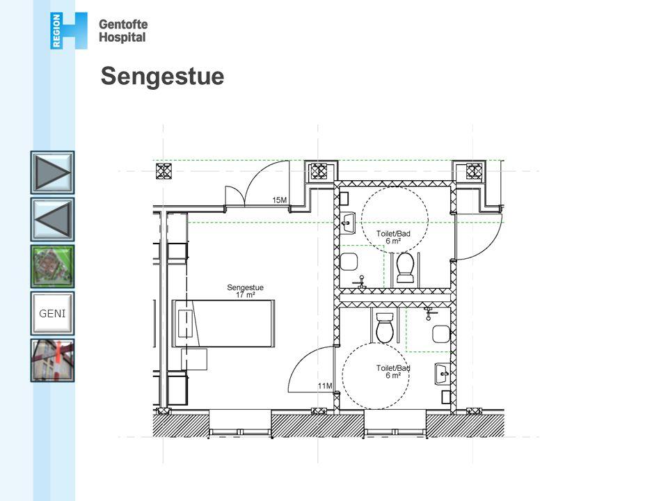 Sengestue GENI