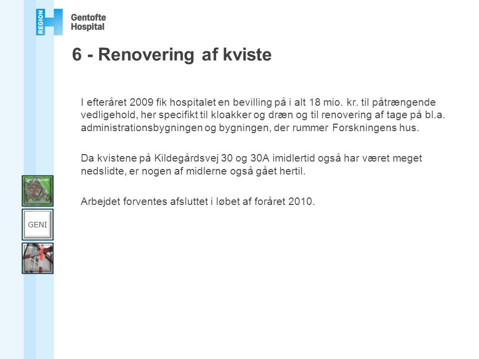 6 - Renovering af kviste