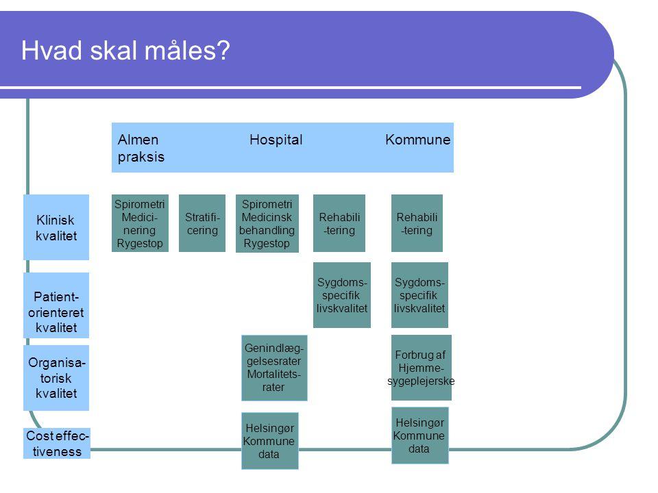 Hvad skal måles Almen Hospital Kommune praksis Klinisk kvalitet