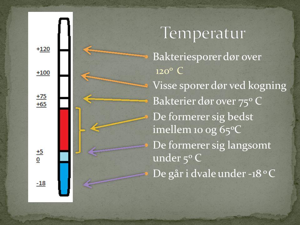 Temperatur Bakteriesporer dør over Visse sporer dør ved kogning