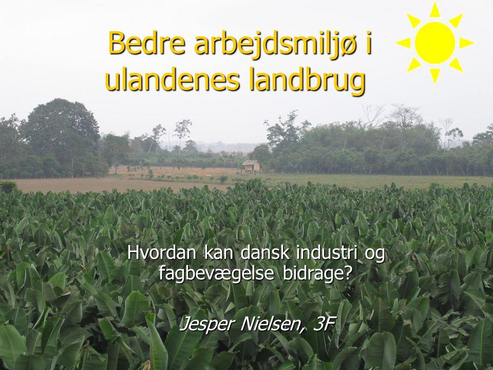 Bedre arbejdsmiljø i ulandenes landbrug