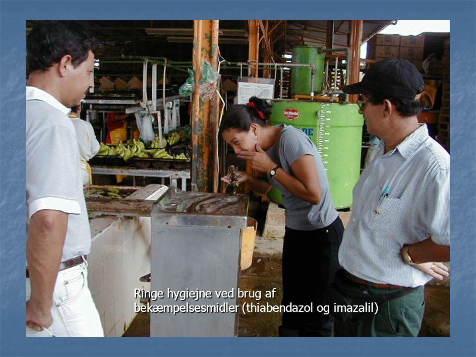 Ringe hygiejne ved brug af bekæmpelsesmidler (thiabendazol og imazalil)