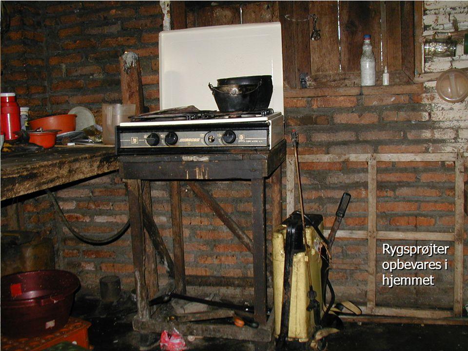 Rygsprøjter opbevares i hjemmet