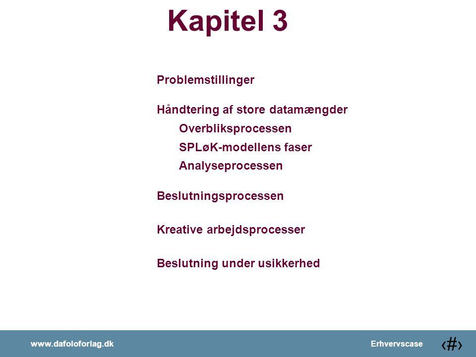 Kapitel 3 Problemstillinger Håndtering af store datamængder