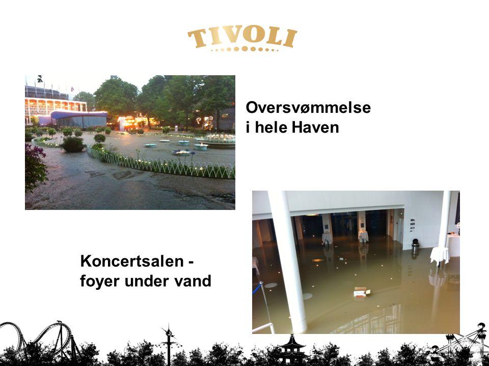 Oversvømmelse i hele Haven