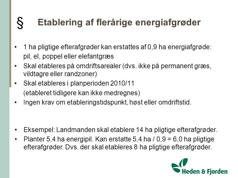 Etablering af flerårige energiafgrøder