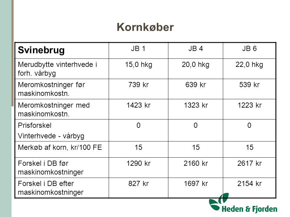 Kornkøber Svinebrug JB 1 JB 4 JB 6
