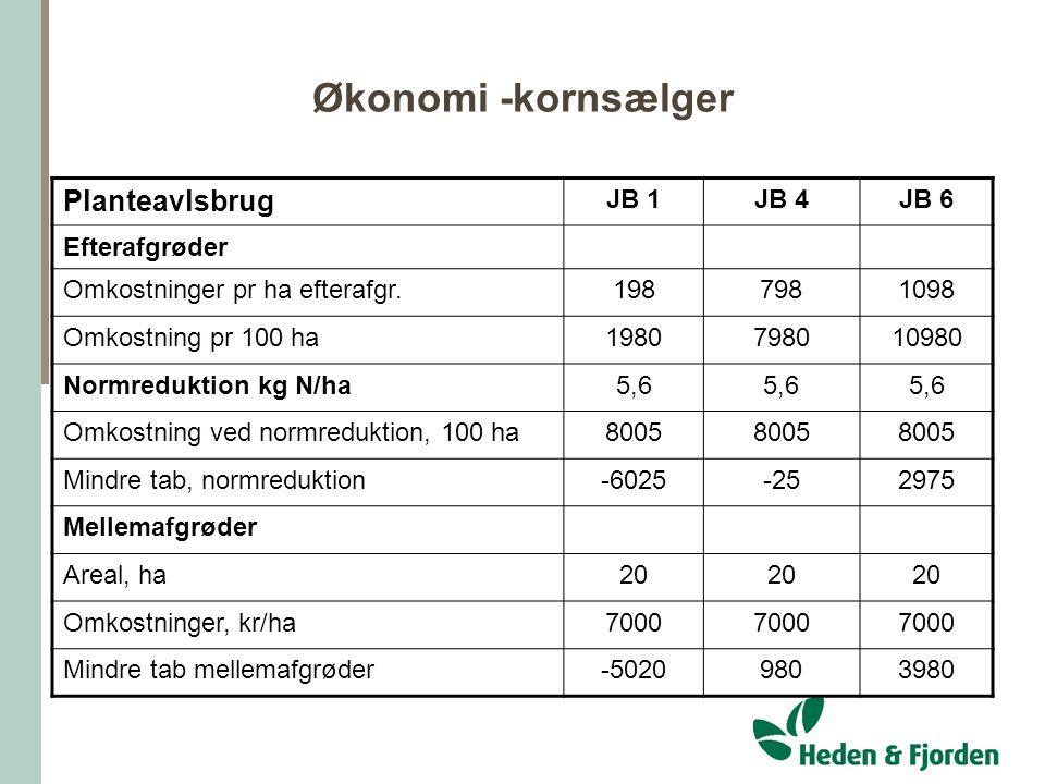 Økonomi -kornsælger Planteavlsbrug JB 1 JB 4 JB 6 Efterafgrøder