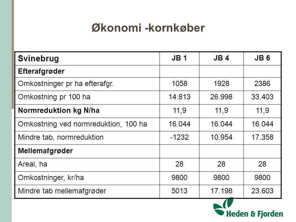 Økonomi -kornkøber Svinebrug JB 1 JB 4 JB 6 Efterafgrøder