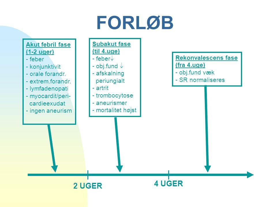 FORLØB 4 UGER 2 UGER Akut febril fase Subakut fase (1-2 uger)