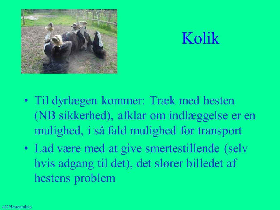 Kolik Til dyrlægen kommer: Træk med hesten (NB sikkerhed), afklar om indlæggelse er en mulighed, i så fald mulighed for transport.