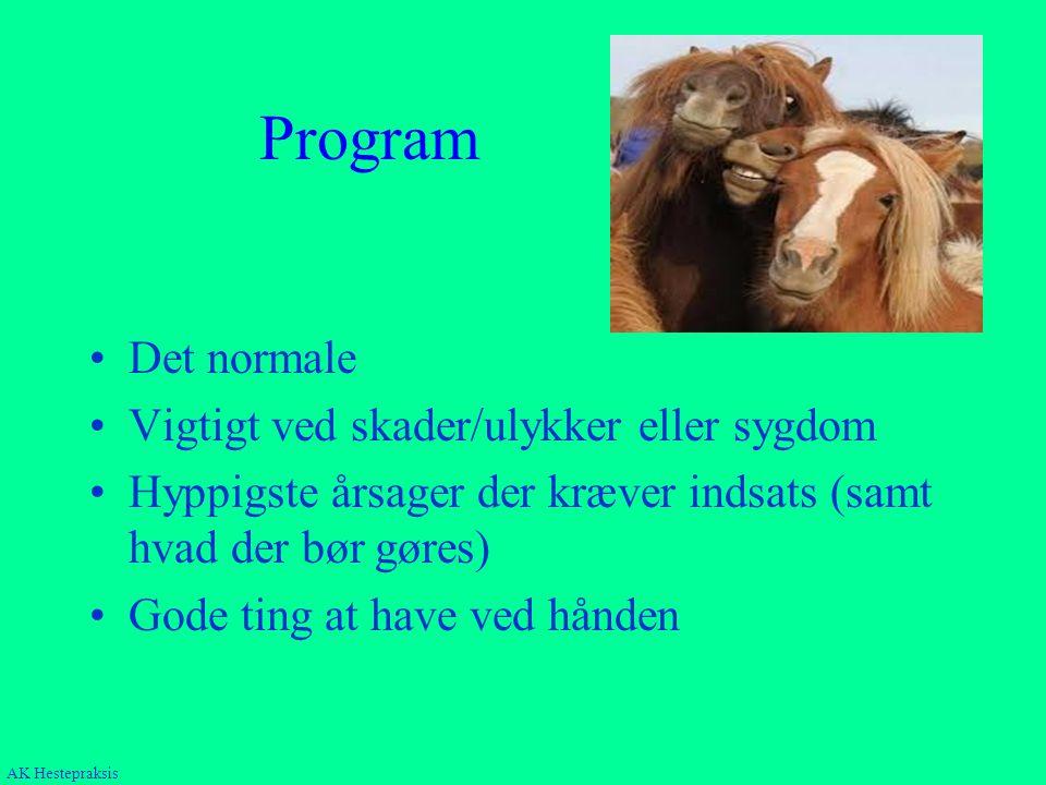 Program Det normale Vigtigt ved skader/ulykker eller sygdom