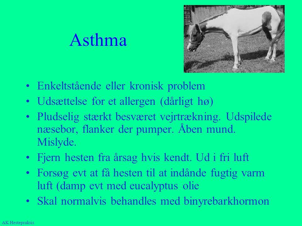 Asthma Enkeltstående eller kronisk problem