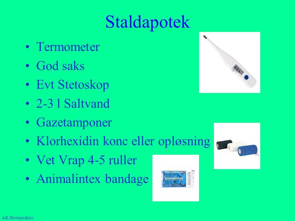 Staldapotek Termometer God saks Evt Stetoskop 2-3 l Saltvand