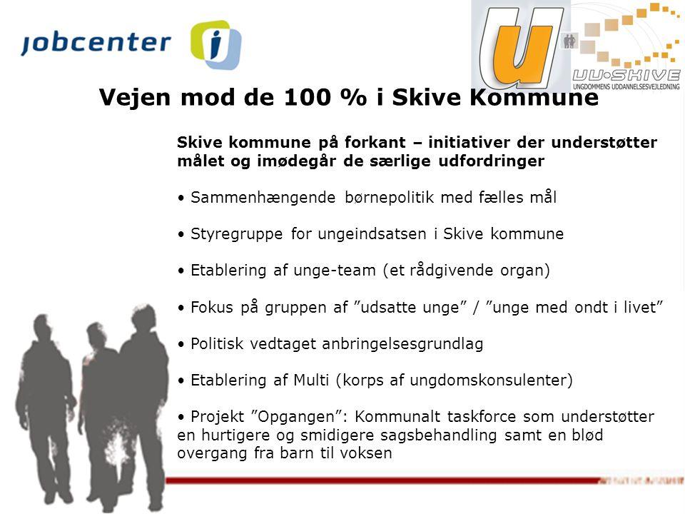 Vejen mod de 100 % i Skive Kommune