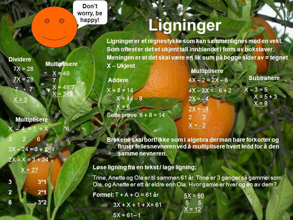 Ligninger Don't worry, be happy!