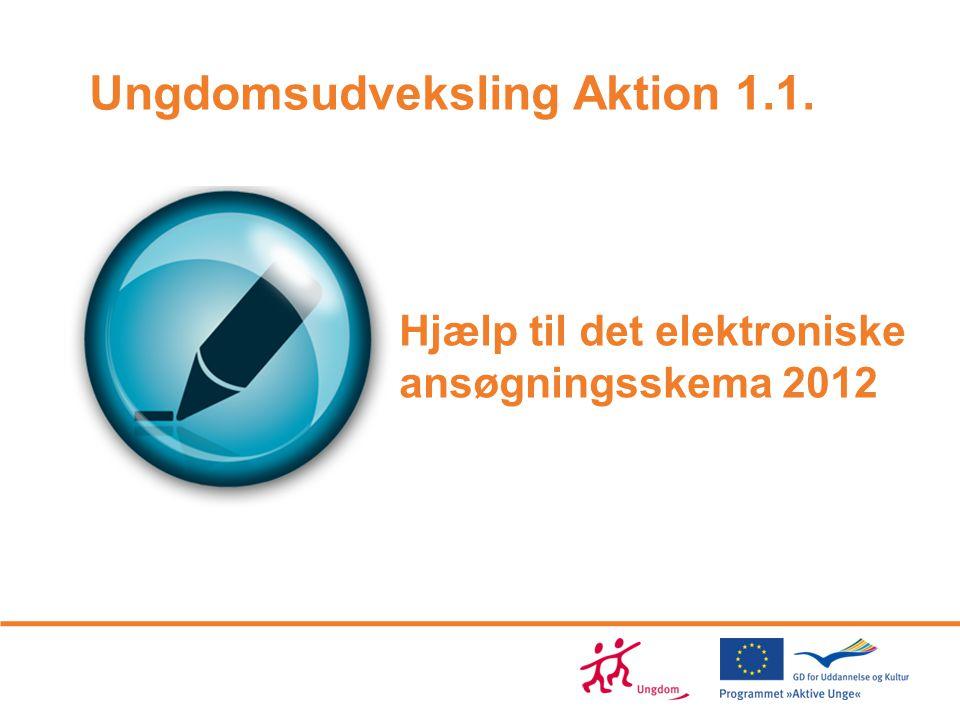 Hjælp til det elektroniske ansøgningsskema 2012