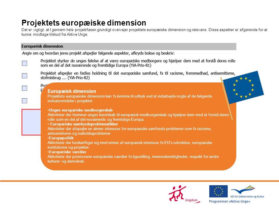 Projektets europæiske dimension Det er vigtigt, at I gennem hele projektfasen grundigt overvejer projektets europæiske dimension og relevans. Disse aspekter er afgørende for at kunne modtage tilskud fra Aktive Unge.