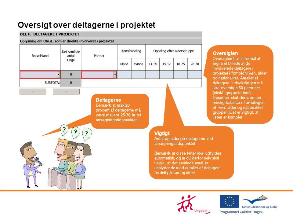 Oversigt over deltagerne i projektet