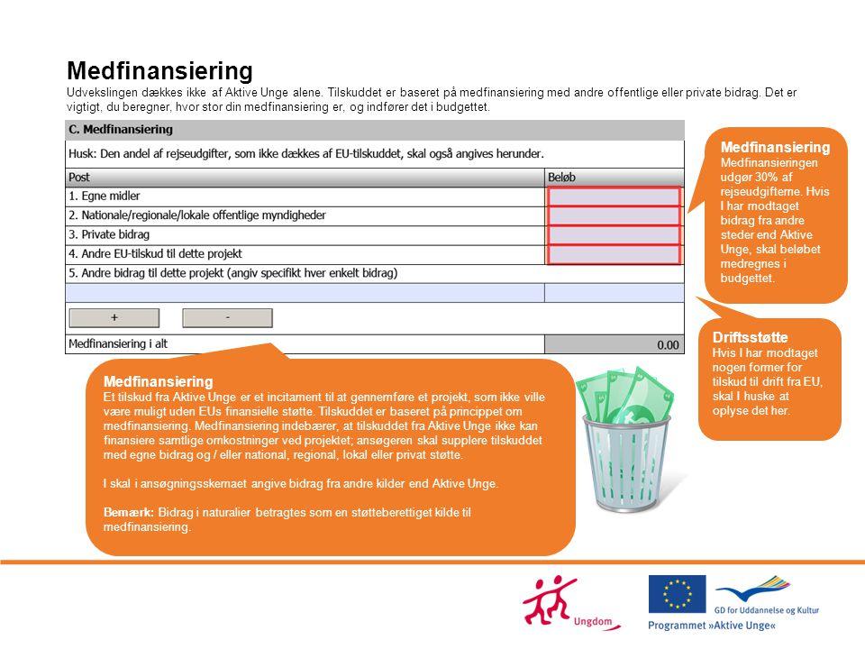 Medfinansiering Udvekslingen dækkes ikke af Aktive Unge alene