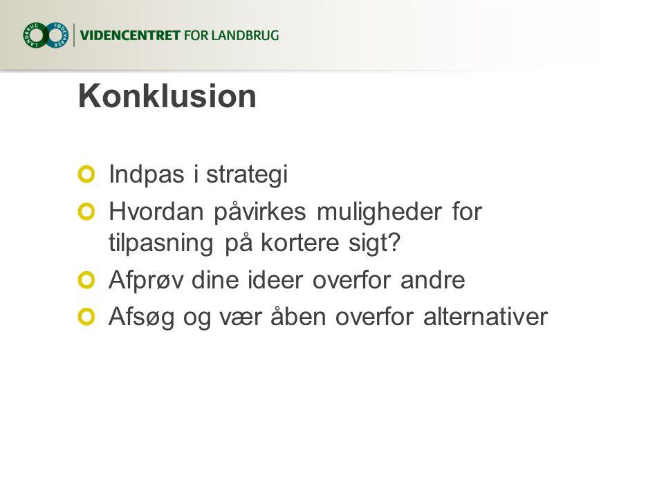 Konklusion Indpas i strategi