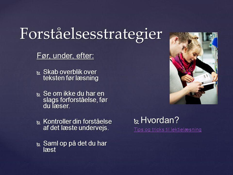 Forståelsesstrategier