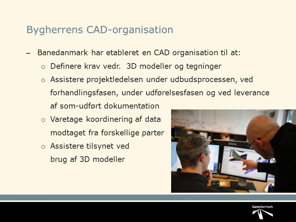 Bygherrens CAD-organisation