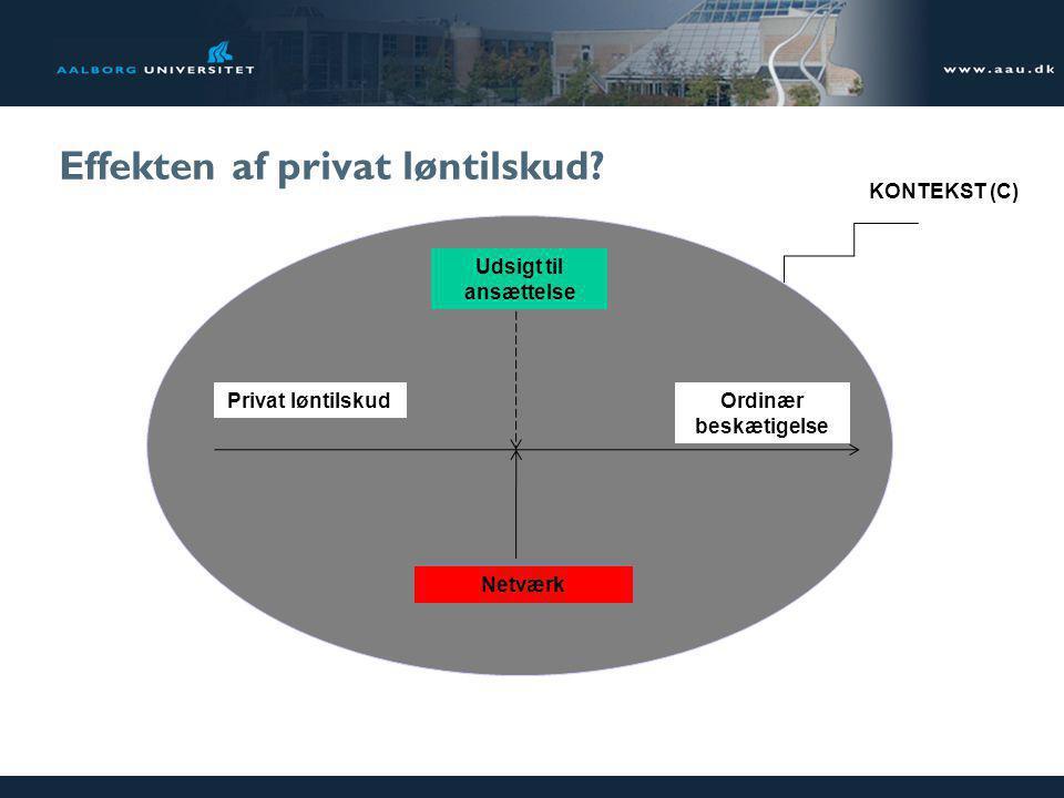 Effekten af privat løntilskud