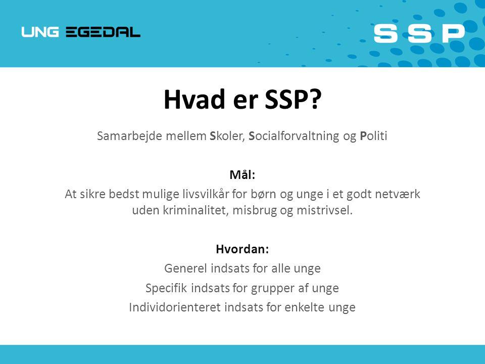 Hvad er SSP Samarbejde mellem Skoler, Socialforvaltning og Politi