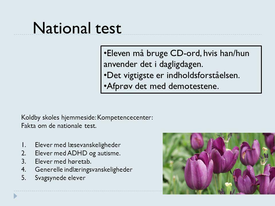 National test Eleven må bruge CD-ord, hvis han/hun anvender det i dagligdagen. Det vigtigste er indholdsforståelsen.