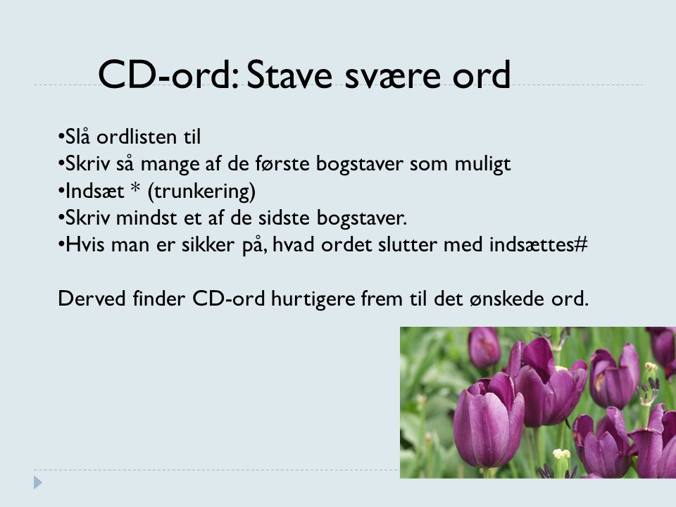CD-ord: Stave svære ord