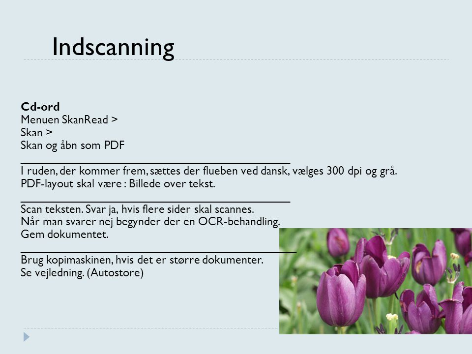 Indscanning Cd-ord Menuen SkanRead > Skan > Skan og åbn som PDF