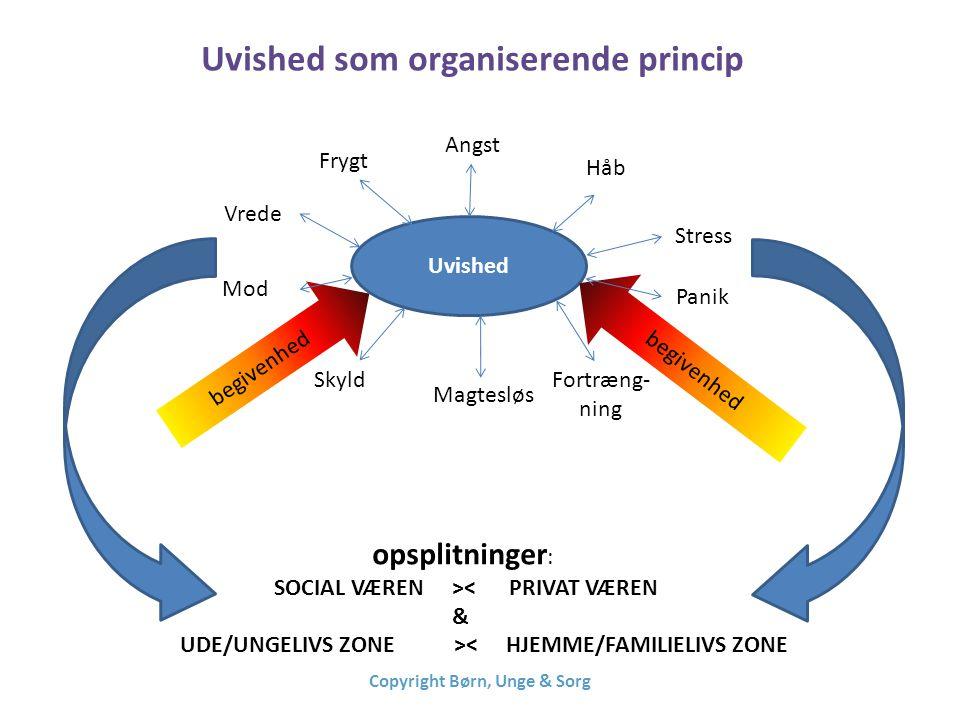 Uvished som organiserende princip