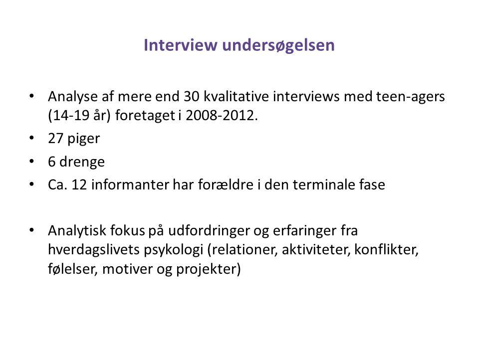Interview undersøgelsen