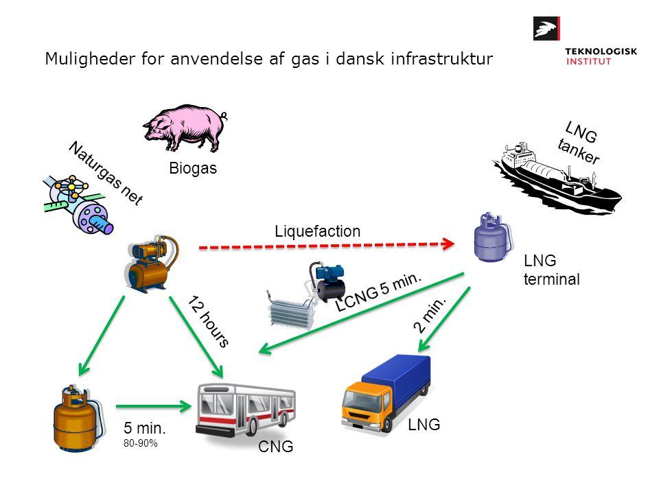Muligheder for anvendelse af gas i dansk infrastruktur