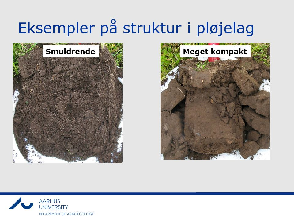 Eksempler på struktur i pløjelag