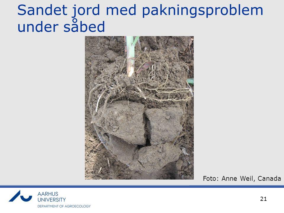 Sandet jord med pakningsproblem under såbed