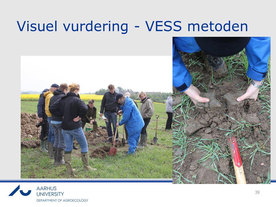 Visuel vurdering - VESS metoden
