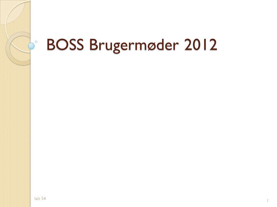BOSS Brugermøder 2012 Ialt 54