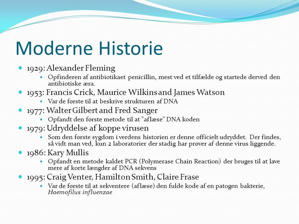 Moderne Historie 1929: Alexander Fleming